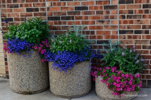 Business Custom Designed Summer Flower Containers