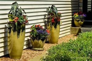 Home Custom Designed Summer Flower Containers