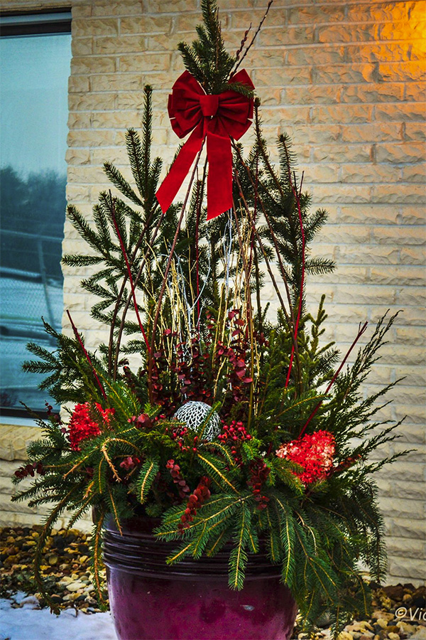 Home Christmas Plant Container