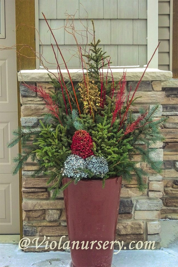 Home Evergreen Container