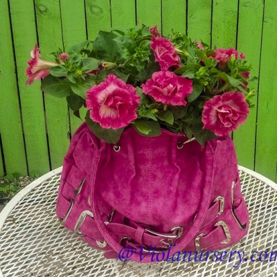 Custom Designed Planters and Baskets
